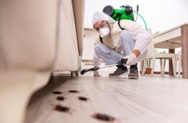 how insecticide kills cockroaches