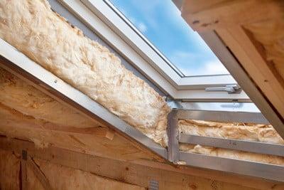 roaches in attic insulation