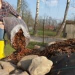 does garden mulch attract cockroaches?