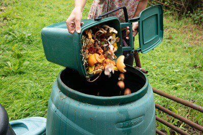how to get rid of cockroaches in compost bin