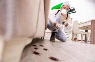 will fumigation kill cockroaches?